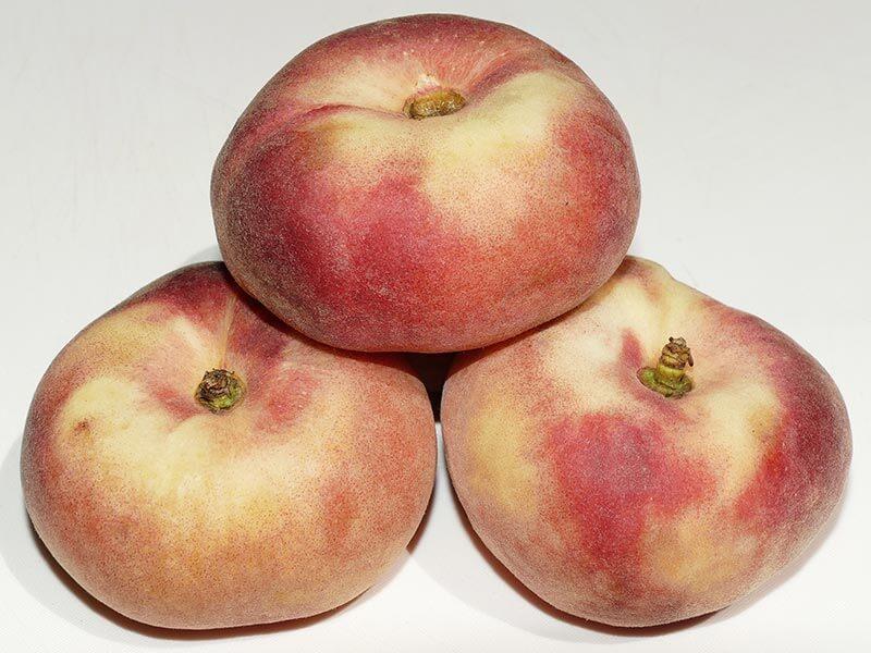 fruit4you-bergpfirsich