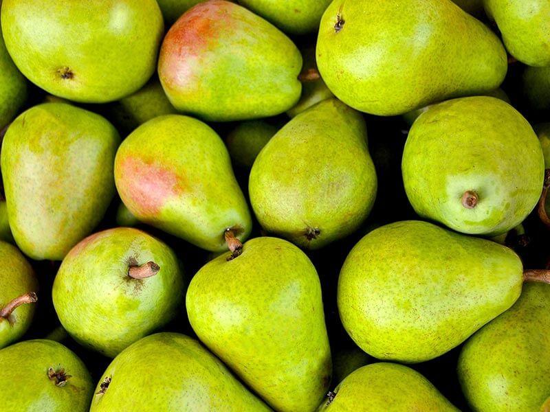 fruit4you-birne