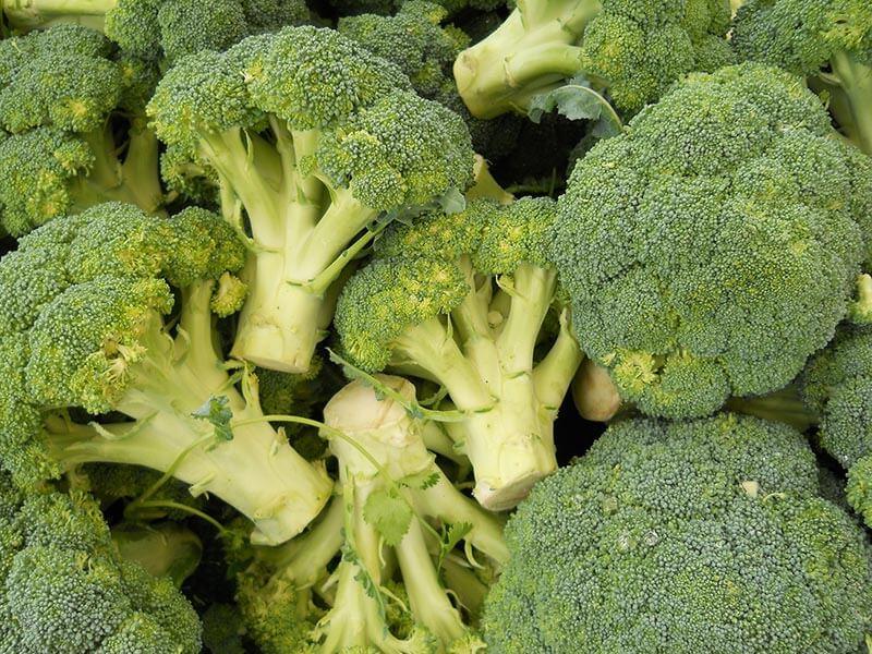 fruit4you-broccoli