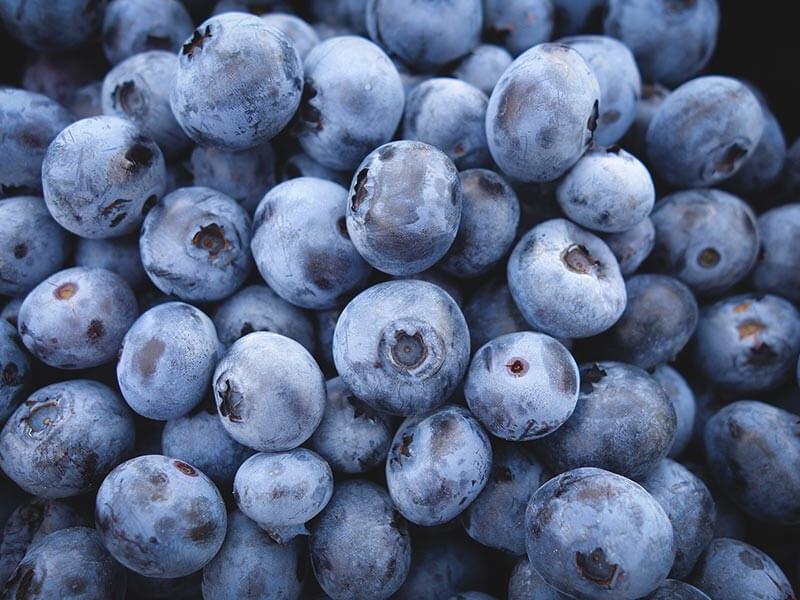 fruit4you-heidelbeeren