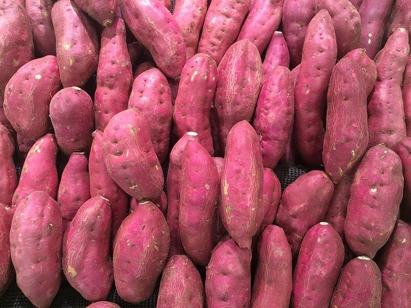 fruit4you-suesskartoffel